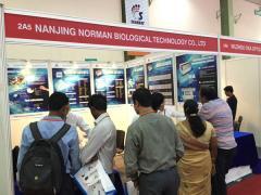 Nanjing Norman Biological Technology Co., Ltd.