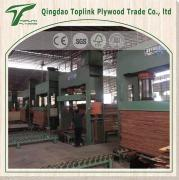 Qingdao Toplink Trade Co., Ltd.