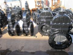 Tianjin Tangfa Watts Valve Sales Co., Ltd.
