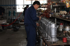 Taizhou Dalang Pump Industry Co., Ltd.