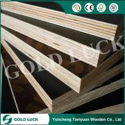 Yuncheng Tianyuan Wooden Co., Ltd.