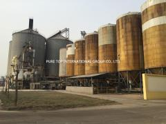 Pure Top International Group Co., Limited