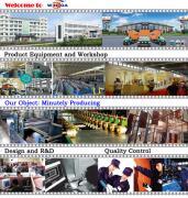 Winga Group Co., Limited