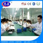 Shandong Liaocheng Luxing Lighting Co., Ltd.