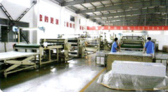 Jiangsu Sunplas Co., Ltd.