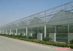 Foshan Hansen Supply Chain Management Co., Ltd.