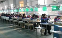 Linan Chaoqiang Lighting Electrical Equipment Co., Ltd.