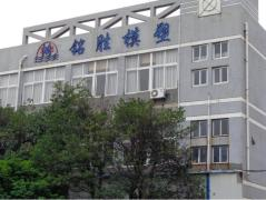 Ningbo Mingsheng Plastic & Mold Co., Ltd.