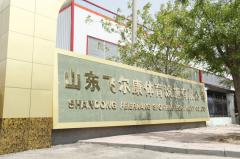 SHANDONG FEIERKANG SPORTS FACILITIES CO., LTD.
