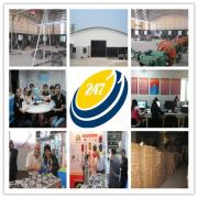 Guangzhou 247 International Trading Co., Ltd.