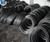 Ningbo Transhow Screw Factory