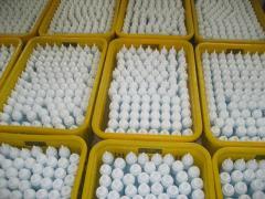 Yancheng Huisheng Medical Instrument Factory