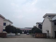 Lin'an CaiWang Lighting Electrical Co., Ltd.