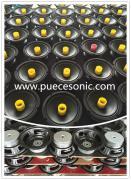 Guangzhou Puecesonic Electronic Co., Ltd.