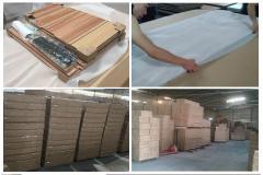 Foshan Sun Gold Furniture Co., Ltd.