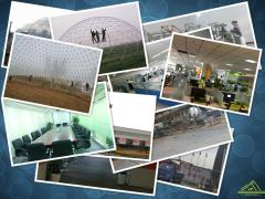 Tianjin Feilong Jiahe Greenhouse Technology Co., Ltd.