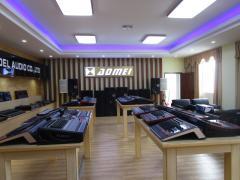 Enping Aomei Audio Co., Ltd.