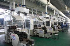 Shandong Ruiyu Accumulator Co., Ltd.