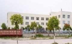 Wuhan Forte Battery Co., Ltd.