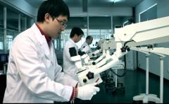 Alltion (Wuzhou) Co., Ltd.