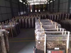 Fujian Dingshi Stone Co., Ltd.
