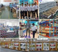 Shenzhen Flyers Technology Co., Ltd.