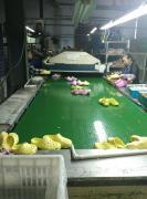 Fuzhou Tiano Trading Co., Ltd.