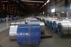 Shandong Dubang International Trading Co., Ltd.