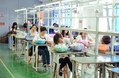 Shenzhen Hosing Technology Development Co., Ltd.