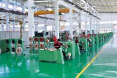 Guangdong Keyuan Electric Co., Ltd.