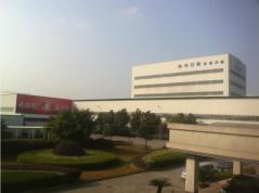 Zhejiang Xingristeel Holding Group Co., Ltd.
