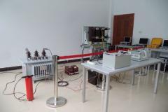 WUHAN GUODIAN ZHONGXING ELECTRICAL POWER EQUIPMENT CO., LTD.
