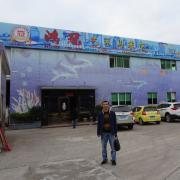 Zhaoqing City Dinghu District Hongguan Art Mosaic Co., Ltd.