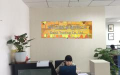 Shenzhen Daoji Trading Co., Ltd.