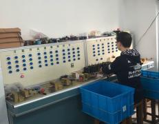 Yue Qing Joy Electric Co., Ltd.