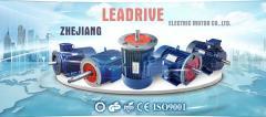 Zhejiang Leadrive Electric Motor Co., Ltd.