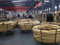 Guangzhou Mochylebon Trade Co., Ltd.