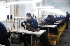 Xuchang Eva Hair Industry Co., Limited