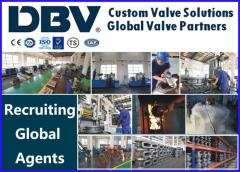 DBV VALVE GROUP CO., LTD.