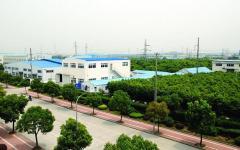 China ACH Co., Ltd.