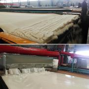 Qingdao Salus International Trade Co., Ltd.