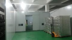 Dayneed Electronic Co., Ltd.