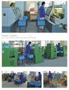 Fenghua Dabiao Pneumatic Technology Co., Ltd.