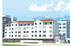 Wenzhou Sanzu International Trading Co., Ltd.