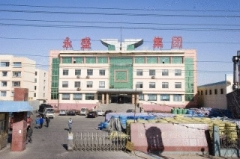 Shandong Yongsheng Rubber Group Co., Ltd.