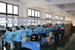 Hunan Leading Science & Technology Development Co., Ltd.