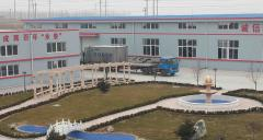 Qingdao Everblue Maritime Co., Ltd.