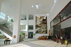 Zhuhai Free Cloud Arts Co., Ltd.
