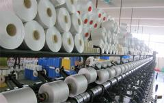 Guangzhou Liqi Textile Technology Co., Ltd.