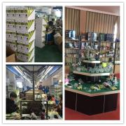 Ningbo Revo Lighting Technology Co., Ltd.